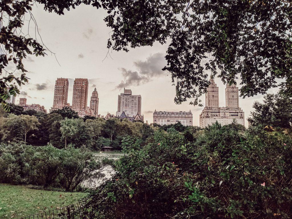 Großstadt neben Grünfläche